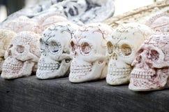 crânes Photo stock