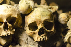 Crânes de catacombes de Paris Photo stock