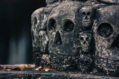 Crânes en pierre Images libres de droits