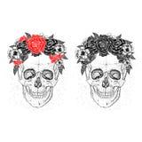 Crânes et fleurs illustration libre de droits