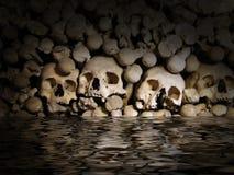 Crânes et os Images libres de droits