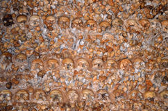 Crânes et os images stock