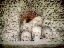 Crânes et os Photos libres de droits