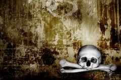 Crânes et os humains illustration libre de droits