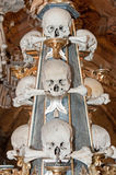 Crânes humains Photographie stock