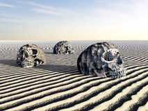 Crânes humains Image libre de droits