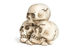 Crânes humains Photos stock