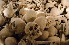 Crânes humains Images libres de droits