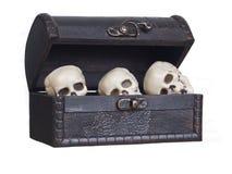 Crânes humains dans un coffre en bois Photos stock