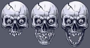 Crânes humains noirs et blancs graphiques détaillés réglés illustration stock