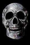 Crânio Imagens de Stock