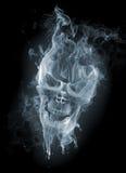 Crânio Foto de Stock