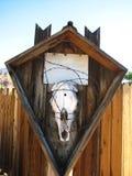 Crânio animal foto de stock royalty free