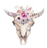 Crânio boêmio da vaca da aquarela Mamíferos ocidentais Quadril do Watercolour ilustração royalty free