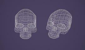 Crânio - cabeça Fotos de Stock