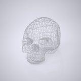 Crânio - cabeça Foto de Stock Royalty Free