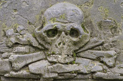Crânio cinzelado Fotografia de Stock