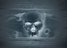 Crânio cinzelado na pedra Imagem de Stock