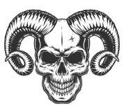 Crânio com chifres Imagens de Stock