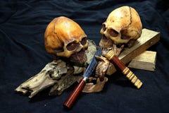 Crânio com facas e madeira clássicas no fundo preto - ainda facas do clássico do estilo de vida Foto de Stock
