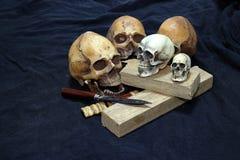 Crânio com facas e madeira clássicas no fundo preto - ainda facas do clássico do estilo de vida Imagem de Stock