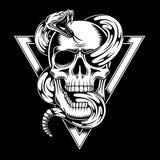 Crânio com ilustração do vetor da serpente Imagem de Stock