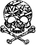 Crânio da droga ilustração royalty free