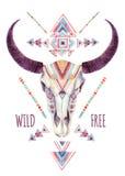 Crânio da vaca no estilo tribal Crânio animal com ornamento étnico Foto de Stock Royalty Free