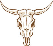 Crânio de Bull Imagens de Stock