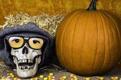 Crânio de Dia das Bruxas Imagens de Stock