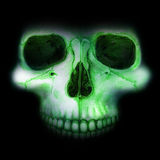 Crânio de néon na escuridão Fotografia de Stock Royalty Free