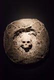 Crânio de pedra Foto de Stock