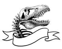 Crânio de T-rex ilustração royalty free