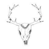 Crânio desenhado à mão dos cervos com ornamento nativo ilustração royalty free