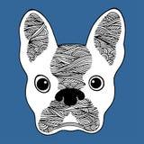 Crânio do açúcar do buldogue francês, dia de cão bonito dos mortos, mão do frenchie do vetor tirada Fotos de Stock Royalty Free