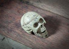 Crânio do foco seletivo no fundo de madeira Imagens de Stock Royalty Free