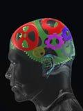 Crânio do homem transparente com as engrenagens da curva da cor Fotografia de Stock