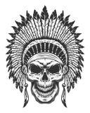 Crânio do indiano americano Foto de Stock Royalty Free