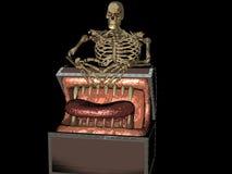 Crânio do pirata Imagem de Stock Royalty Free