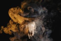 Crânio do Ram com chifres e um chapéu de jogador Imagens de Stock Royalty Free