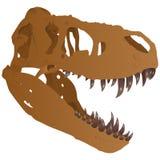 Crânio do tiranossauro Foto de Stock