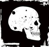 Crânio do vetor de Grunge Foto de Stock
