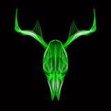 Crânio dos cervos vetor do estilo 3d para a cópia, tatuagem, t Foto de Stock