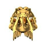 Crânio dourado de Dino Imagens de Stock