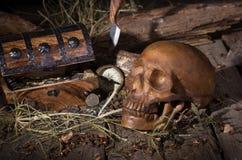 Crânio e arca do tesouro foto de stock