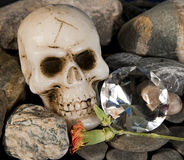 Crânio e diamante Foto de Stock