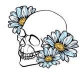 Crânio e flores da tinta ilustração stock
