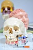 Crânio e medicina Fotografia de Stock Royalty Free