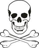 Crânio e ossos Fotografia de Stock