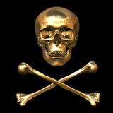 Crânio e ossos 3D Imagem de Stock